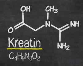 Was bringt eine Kreatin-Kur?